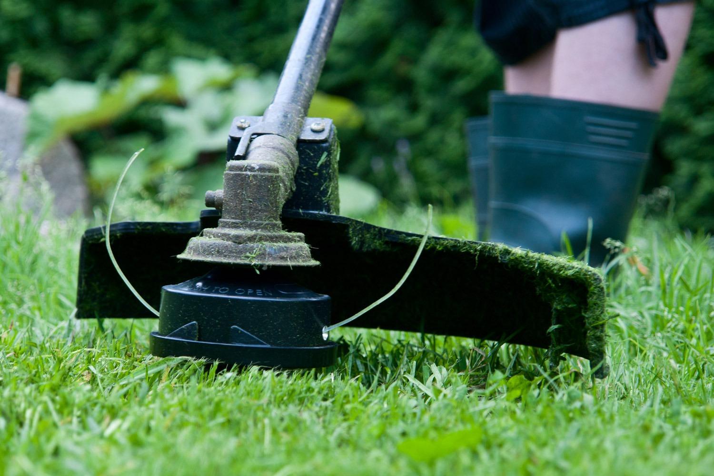 השכרת כלי עבודה לגינה - חנות כלי גינון להשכרה בנתניה