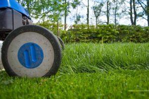 טיפים לשמירת מכסחת דשא